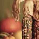 Corn & pumpkin