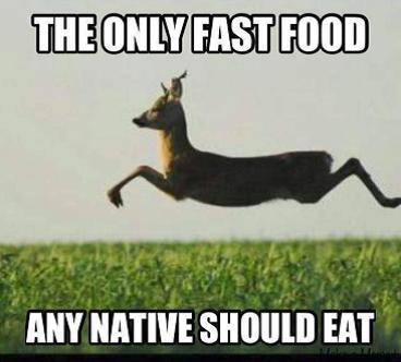 deer as fast food